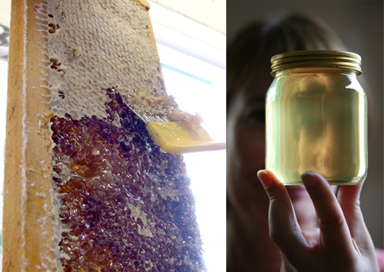 Extracting honey from the supers