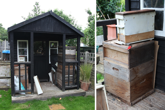 The shed and hive boxes where the swarm of bees settled