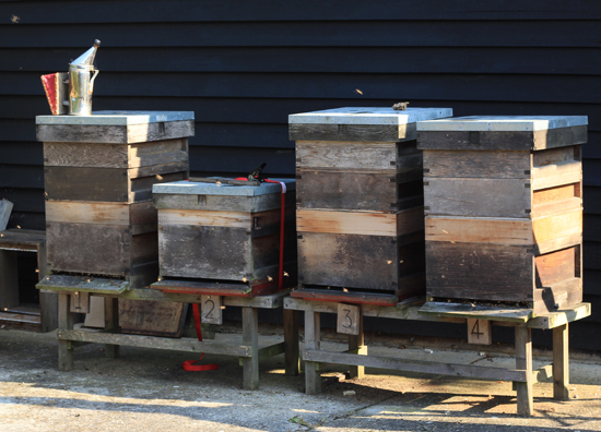 Back up to four hives